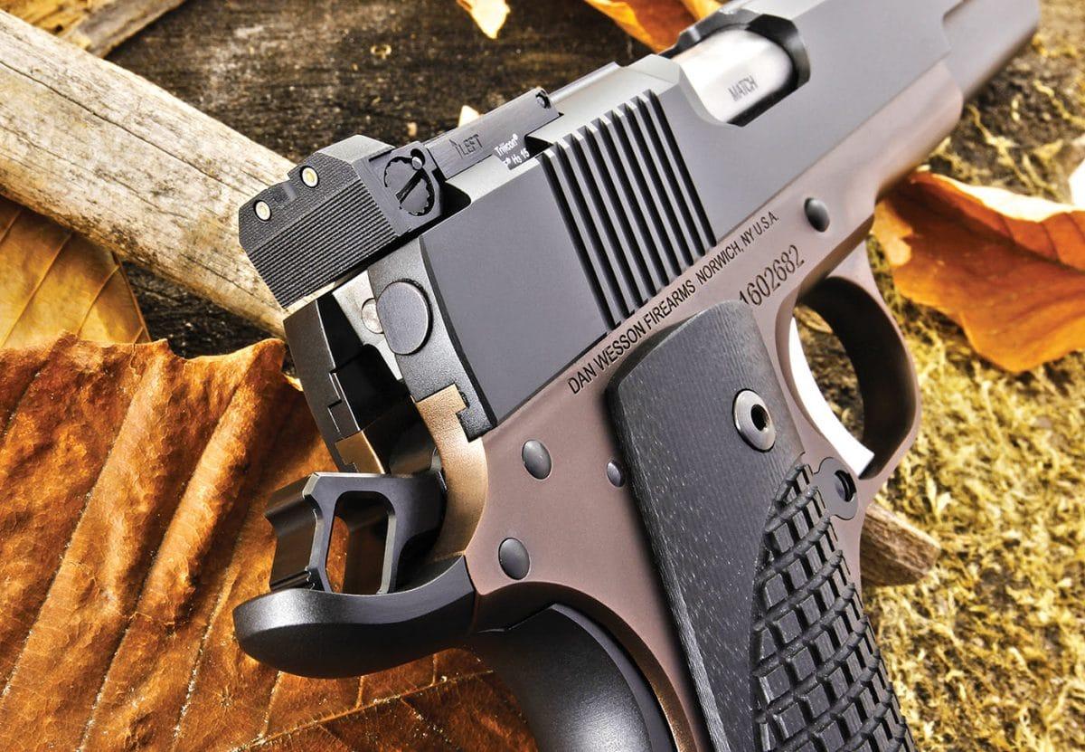 Dan Wesson Bruin Bronze - GAT Daily (Guns Ammo Tactical)